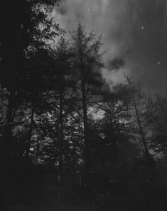 Dark forest, glow of the lake, an eternal dance of death — photography byadragain Dark Landscape, Dance Of Death, Dark Forest, Glow, Celestial, Sunset, Photography, Wallpapers, Outdoor