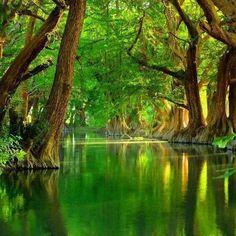 Lake Camecuaro, Mexico A Beautiful Place...