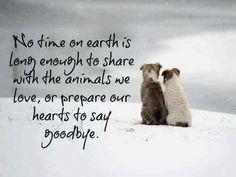 Nice goodbye to both a pet or human