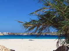 Guitgia beach. Lampedusa. Sicily.