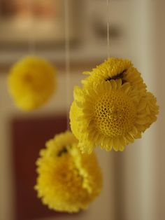 Rajee Sood: Quick and easy... hang some flower balls... this Diwali .. :)   beautiful for a puja room or to hang in a window.