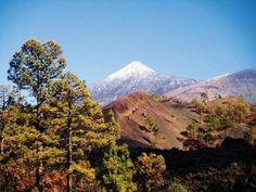 Holidays in #GuiaDeIsora  #Tenerife