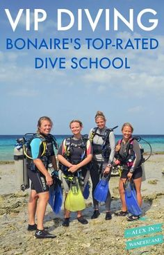 VIP Diving is Bonaire's top-rated dive school, and for good reason.  They won me over with their excellent service, beautiful design, and dedication to sustainability.