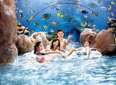 Adventure Cove Waterpark - Sentosa Island - Reviews of Adventure Cove Waterpark - TripAdvisor