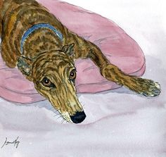 PAINTING GREYHOUND LURCHER WHIPPET DOG 6527 ITALIAN Dianne Heap PRINT BRINDLE | eBay