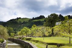 Lovely soul, follow my journey www.edenazores.com #portugal #landscape #pattern #travel #blog #azores #island #nature Azores, Perspective, Vineyard, Portugal, Country Roads, Journey, Island, Landscape, Nature
