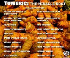 Tumeric ...the miracle root. Just bought Organic Turmeric Ginger Green Tea from @therepublicoftea YUMMY! http://www.ebay.com/itm/Curcumin-Blend-60-Count-/322482882728