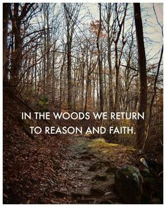 Who wants to go hiking? Woods may look different, but hiking through it and hearing only the sounds of nature is the same. Find serenity through physical activity and far away from civilization. Emerson had such a beautiful thought process. All Nature, Back To Nature, Green Nature, Phrase Cute, Great Quotes, Inspirational Quotes, Uplifting Quotes, Awesome Quotes, Meaningful Quotes