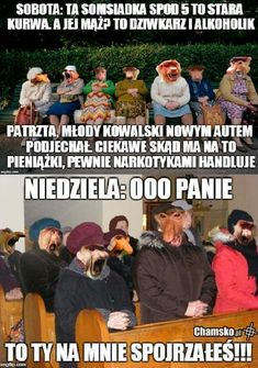 Polish Memes, Dramione, Good Mood, Best Memes, True Stories, Fun Facts, Haha, Humor, My Love