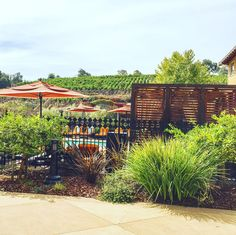 Napa Valley - Meritage Resort and Spa