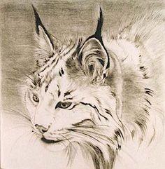 "lynx art - ""Google"" paieška"