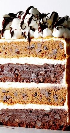 The Ultimate S'mores Layer Cake Recipe ~ Unbelievably delicious cake... layers of fudgy brownies and chocolate chip graham, all iced with a toasted marshmallow frosting