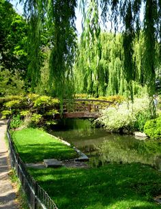 """Regent's Park - London.  Expansive, peaceful, picturesque, and a surprise around every turn for the newcomer.  And I was lucky enough to attend a semester of college situated right in the middle of the park.  No trouble finding a private spot to study or just """"cop a squat"""" here!"""