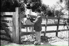 Laurel & Hardy - Flying Deuces - 1939