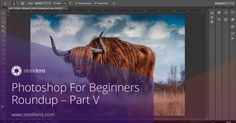 A continuation of our beginner's series on Adobe Photoshop.
