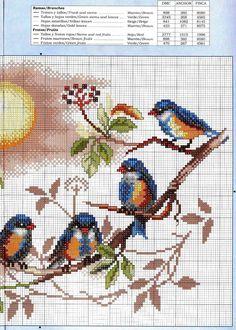 Gráficos de Ponto Cruz: Pássaros em gráficos de ponto cruz