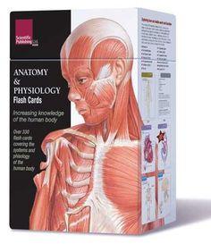 9 best Anatomy Flashcards images on Pinterest   Anatomy flashcards ...