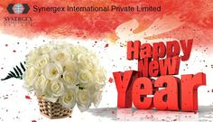 In this New Year... May good luck and good fortune always be with you! Happy New Year 2017   Regards,  Synergex International Pvt Ltd & Team