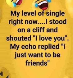 """My level of single right now. I stood on a cliff and shouted """"I love you"""". My echo replied """"I just want to be friends"""". Woman Quotes, Funny Girl Quotes, Crazy Quotes, Sarcastic Quotes, Why Im Single Quotes, Single Jokes, Single Life Humor, Funny Texts, Funny Jokes"""