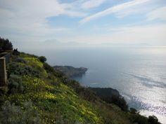 Napoli, panorama dal parco Virgiliano (feb 2009)