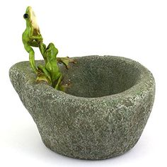 Top Collection Miniature Fairy Garden and Terrarium Frogs on Functional Stone Flower Pot for Succulents >>> For more information, visit image link. Garden Line, My Fairy Garden, Lawn And Garden, Garden Oasis, Succulent Pots, Succulents, Stone Planters, Fairy Garden Supplies, Mini Plants