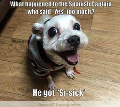 Chistes for Spanish Class - chryssa-humor Spanish Puns, Spanish Posters, Funny Spanish Memes, Funny Memes, Spanish 1, Spanish Sentences, Memes Humor, Spanish Alphabet, 9gag Funny