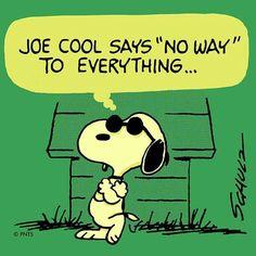 """Joe Cool to this day: ""No way. Peanuts Snoopy, Peanuts Comics, Peanuts Characters, Fictional Characters, Joe Cool, Charlie Brown And Snoopy, Snoopy And Woodstock, American Comics, Quote Posters"