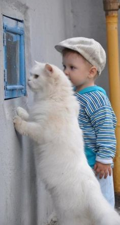 Precious child and his kitty...