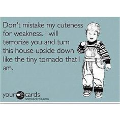 this is soooo my Benji but it is all worth it!!!  He gives great kisses for his tornado....lol