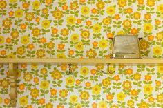 wallpaper sunny
