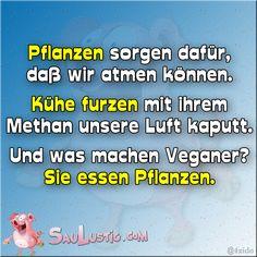 Was machen Veganer  http://saulustig.com