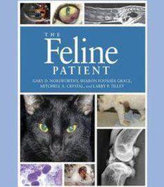 The Feline Patient 4th Edition PDF