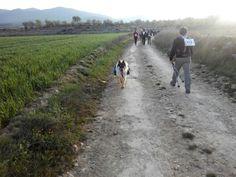 Belmonte, Sierra Vicor, Comarca Comunidad de Calatayud