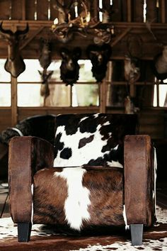 Cowhide beauty - hair on hide club chair - Via Sandy Bentley - #WesternHome