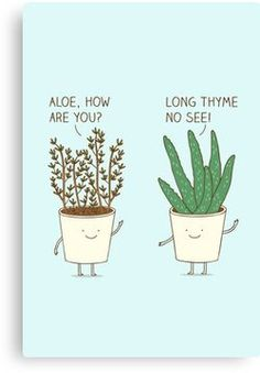 47 ideas funny illustration humor drawings for 2019 Cute Jokes, Cute Puns, Kid Jokes, Pun Quotes, Punny Puns, Funny Doodles, Plants Quotes, Pun Card, Funny Illustration