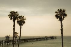 USA / San Clemente / The way to the sea by Manu Foissotte