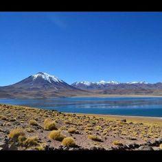 Laguna Miscanti, San Pedro de Atacama, II Región de Antofagasta. Foto by Lorena Lanzarini - photo by chilediscovery