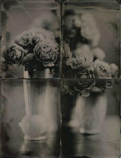 """Robert Kenney; """"peonies in vases"""""""