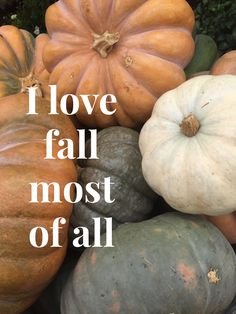 Beautiful weather, great fashion, pumpkin spice everything and decorations. It's the best season!!
