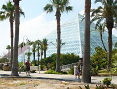 Top 5 Things to do in Galveston, Texas in 2014 - In the Know Traveler. The Moody Gardens pyramid