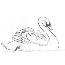 Love it... perfectly,simply drawn swan