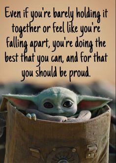 Words To Live By Quotes, Wisdom Quotes, True Quotes, Yoda Meme, Yoda Funny, Yoda Images, Cowgirl Secrets, Sweet Child O' Mine, Student Memes