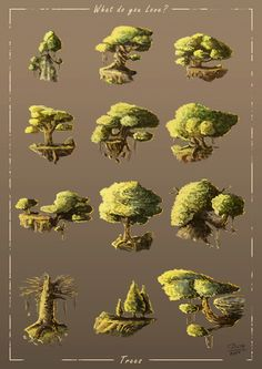 Thiago Baltar - What do you love: Trees