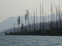 Glamping in Glacier National Park » {406} CreativeVibe - McDonald Lake