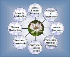 The Eight Limbs – Ashtanga Yoga, Patanjali Yoga Sutras Ashtanga Yoga, Patanjali Yoga, Bikram Yoga, Iyengar Yoga, Pranayama, Asana, Yoga Chart, Yamas And Niyamas, Eight Limbs Of Yoga