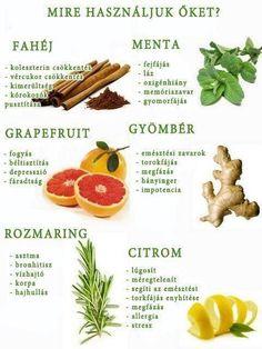 Mire jó a fahéj, menta, gyömbér,grapefruit,citrom és rozmaring?