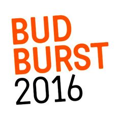 Tickets now on sale for Budburst 2016