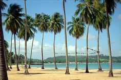 Playa Luquillo, PR