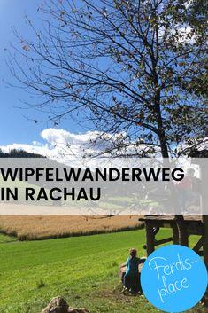 Der Wipfelwanderweg Rachau in der Steiermark ist ein echt tolles Ausflugsziel für die ganze Familie. Du bist hier nicht nur in luftiger Höhe unterwegs, es gibt auch jede Menge tolle Stationen für die Kids, einen genialen Spielplatz sowie eine lange Rutsche. #Ausflugsziel #Steiermark #Rachau #Wandern #Familie Places, Movies, Movie Posters, Playground, Road Trip Destinations, Hiking, Amazing, Tips, Films