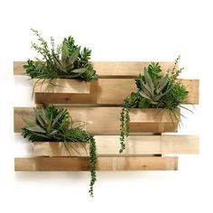 D&W Silks Slatted Wooden Wall Planters - 164041